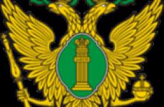 Исполнительный кодекс РФ